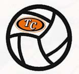 volleyballwithlogo